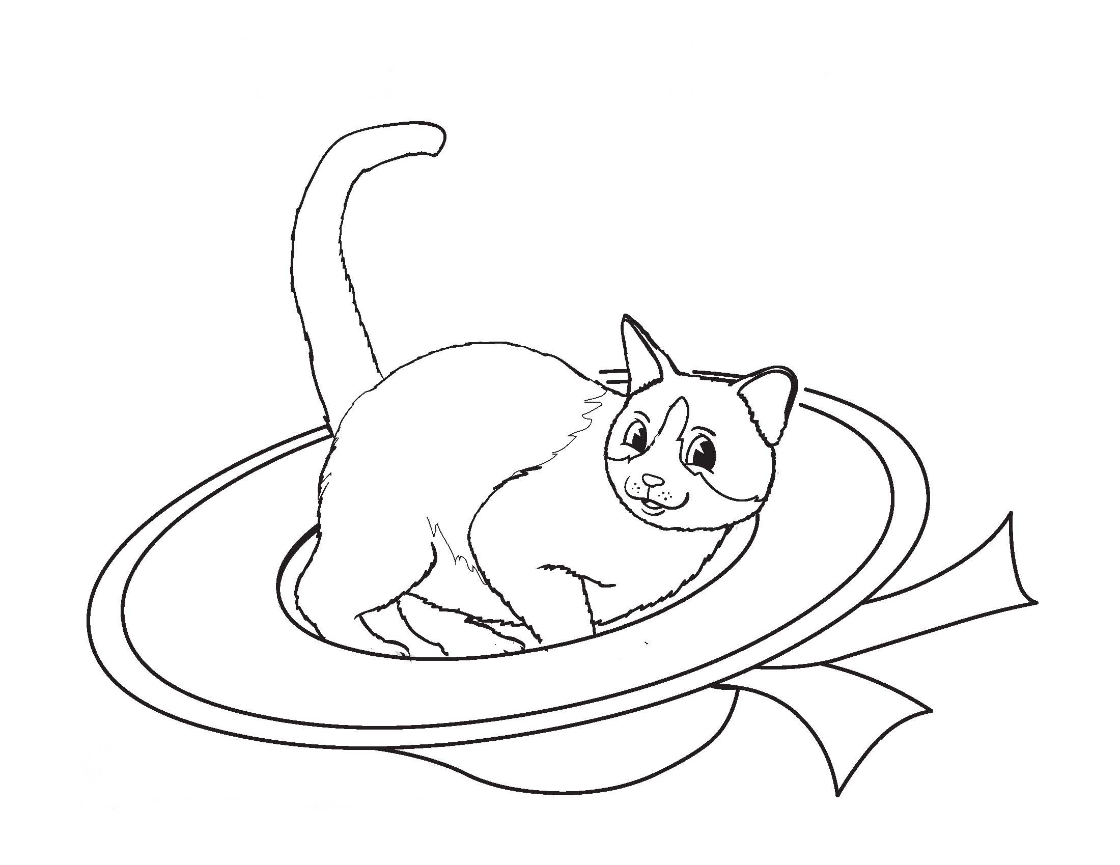 cat birthday coloring pages - photo#38