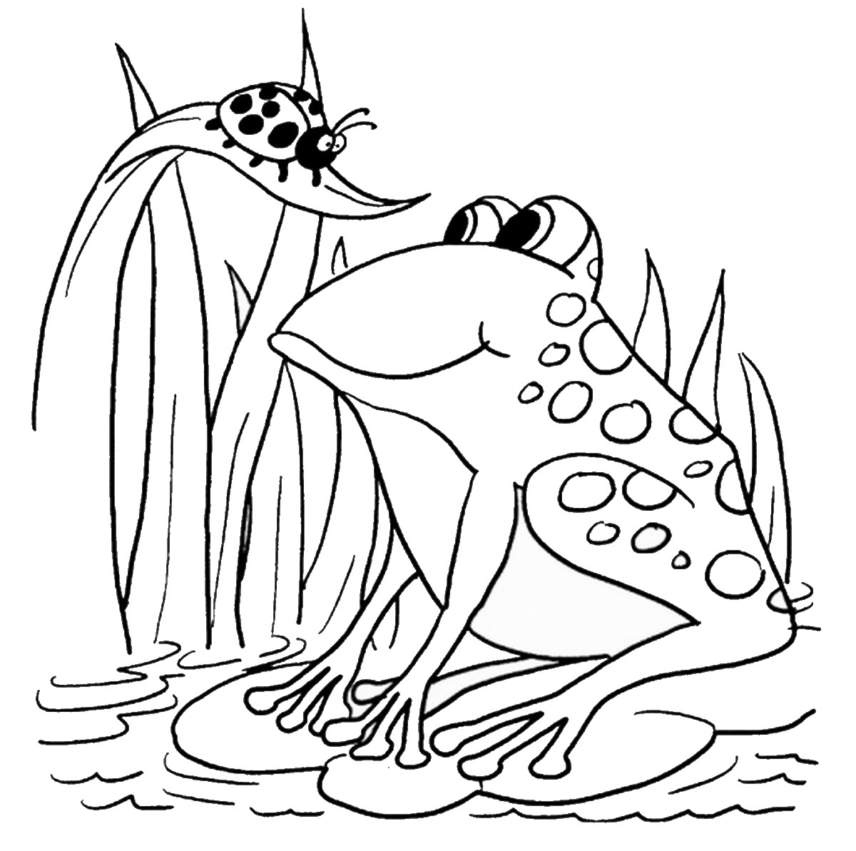 Frog Coloring Pages Birthday