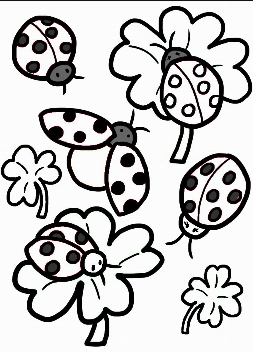 Ladybug coloring pages birthday printable for Coloring pages of ladybugs