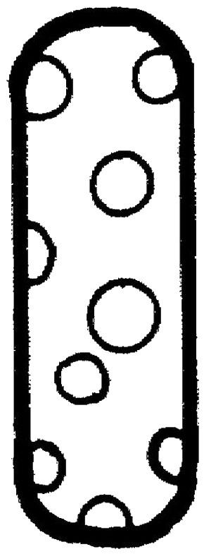 Polka Dots Coloring Pages | Birthday Printable