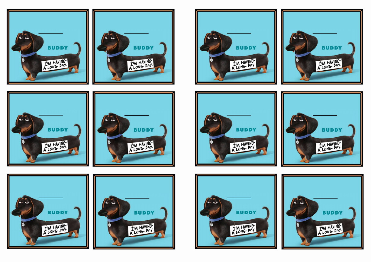 The Secret Life Of Pets Name Tags